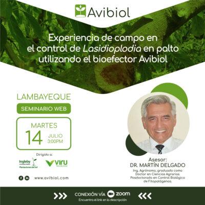 Experiencia de campo en el control de Losidioplodia en palto utilizando el bioefector Avibiol
