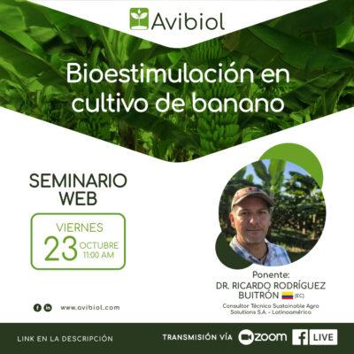 Bioestimulación en cultivo de banano
