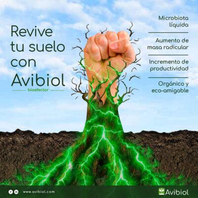 Revive tu suelo con Avibiol Bioefector